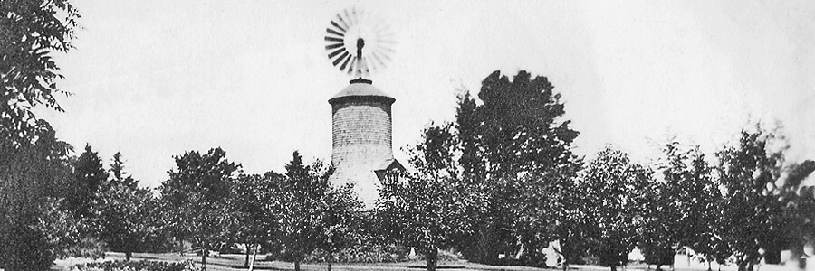 Windmill and orchard